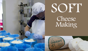 dunlop soft cheese making
